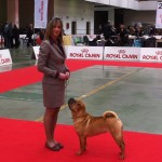 chicca.sanremo13